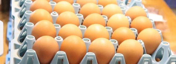 生卵の賞味期限が1か月! 信じる?信じない?